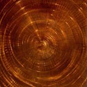 Spirale, 1994 - , 120 x 100 cm