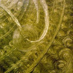 Bibliothèque de Vies, 2001 - , 50 x 40 cm